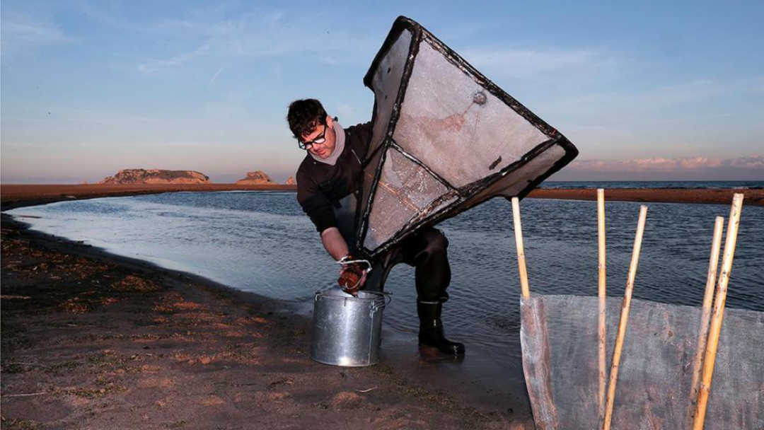 La pesca de l'angula al Ter